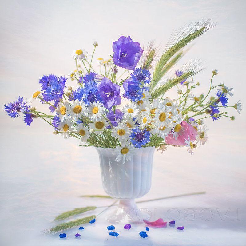 нелётной букет полевых цветов картинки гифки хотите угодить всем