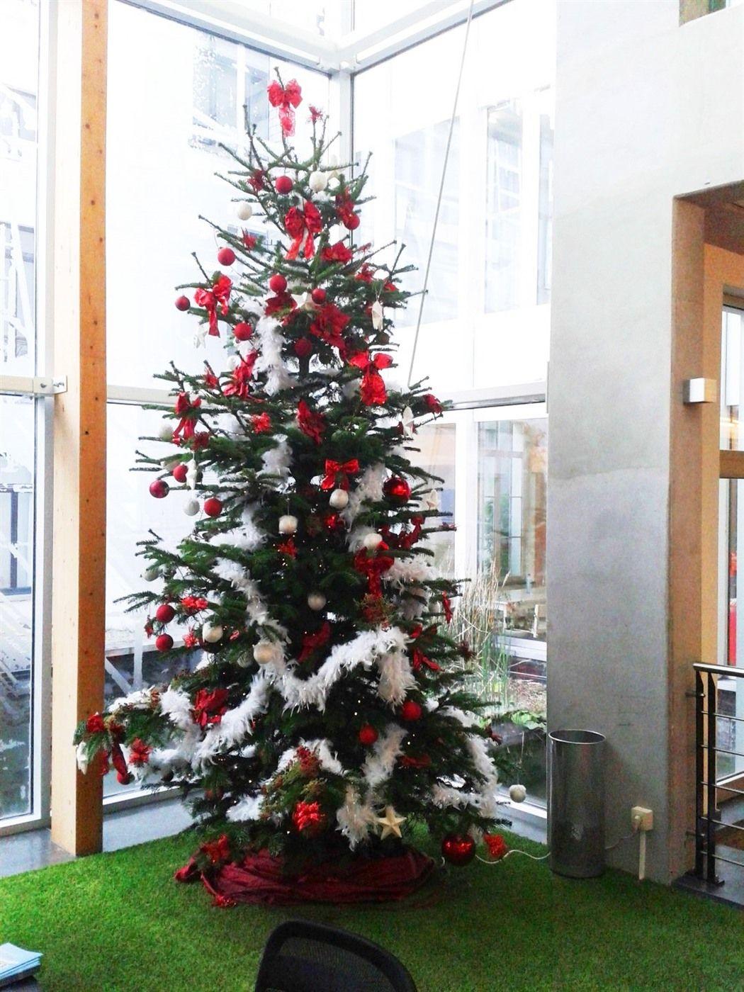 AnyGreen Christmas rent Holiday decor, Christmas tree