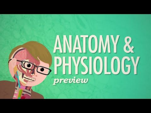 Crash Course Anatomy & Physiology Preview - YouTube | Life ...