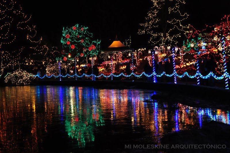 fae9ebf26bf4a7aad4a9f82f277e8ad2 - Hidden Lake Gardens Festival Of Lights