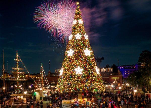 Delightful Christmas Lights