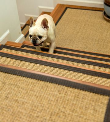 The Natural Tread Is Great For High Traffic Areas, And Helping Cute Little  Dogs Get. Carpet Stair ...
