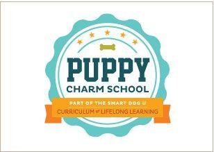 charm school curriculum