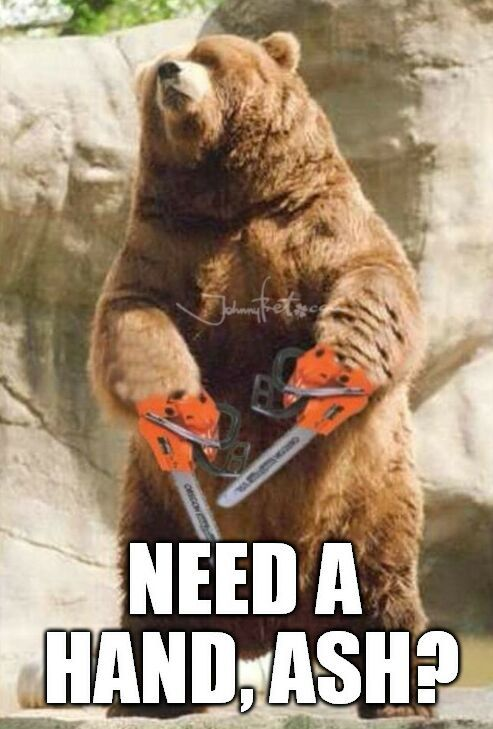 Http Pl Johnnybet Com Gry Siodemki Picture Id 5473 Ashvsevildead Ash Funnyanimals Bear Funnymemes Picture Scavenger Hunts Deadly Creatures Bear