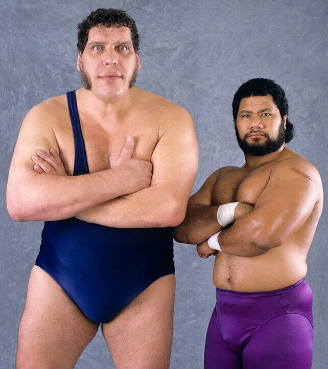 Andre The Giant And Haku Wrestling Superstars Andre The Giant
