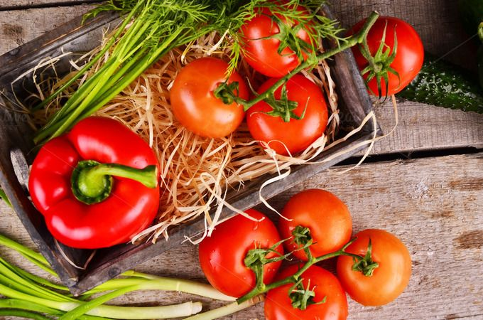 vegetables non-GMO by Victoria Rusyn Shop on Creative Market