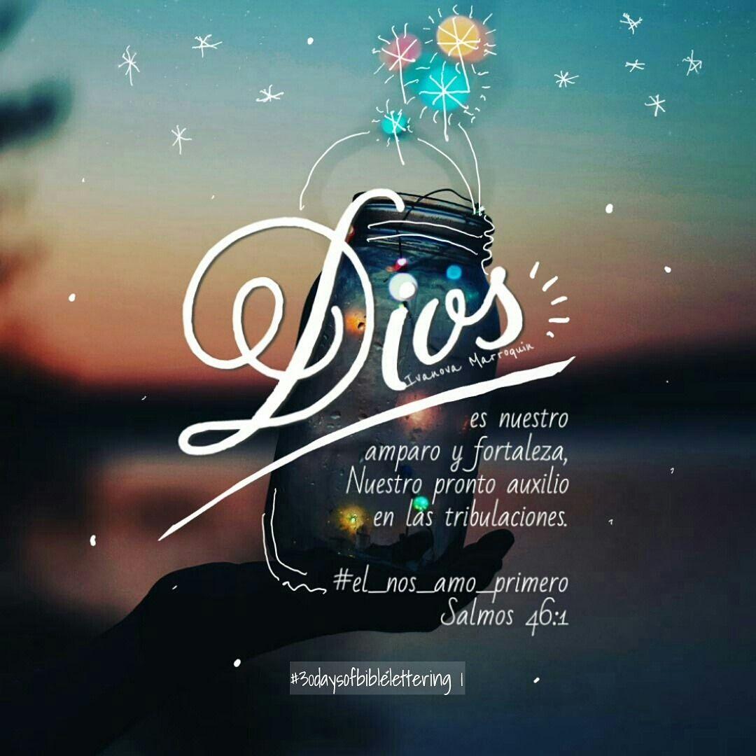 Twitter At Nosamo Instagram At Elnosamoprimero Pinterest