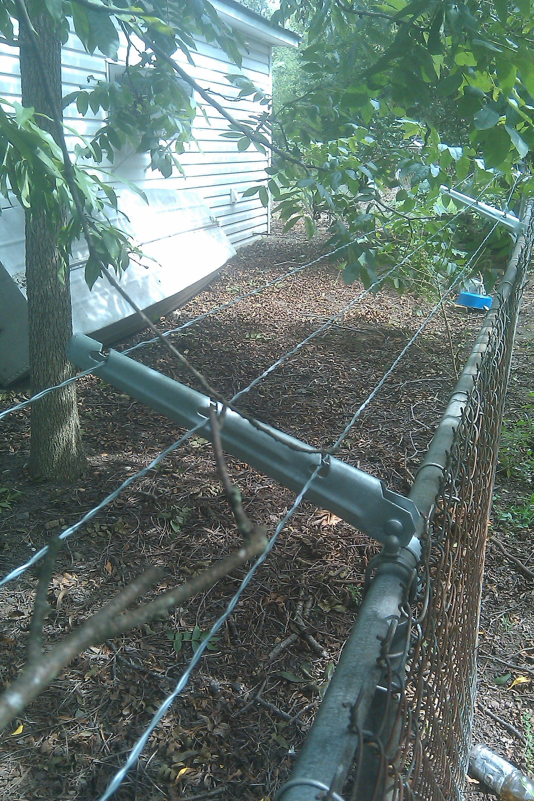 escape proof chain link dog fence