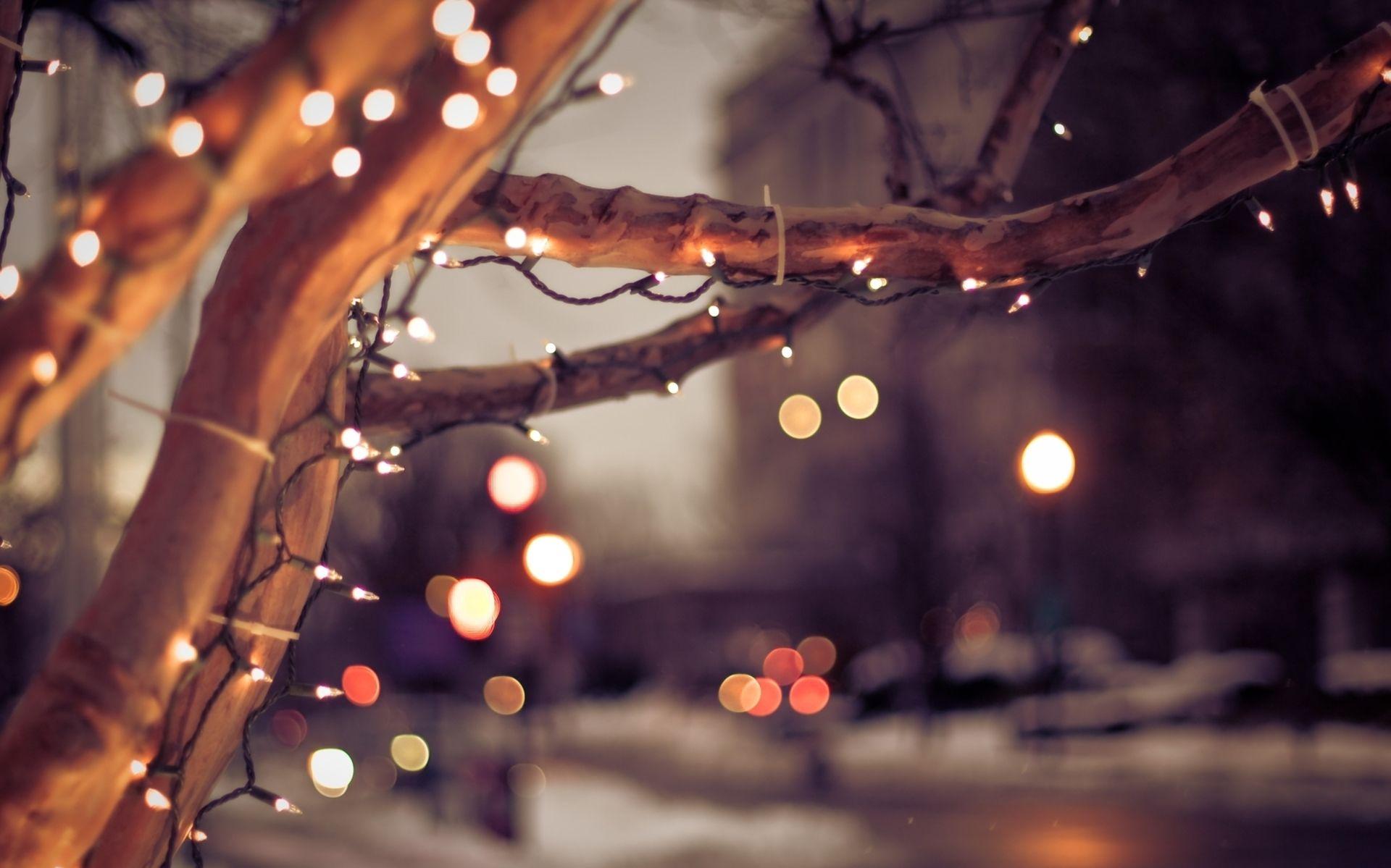 photographie lumière fond d'écran | christmas | pinterest