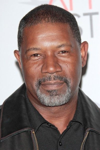 Dennis Dexter Haysbert Born June 2 1954 Commonly Referred To As