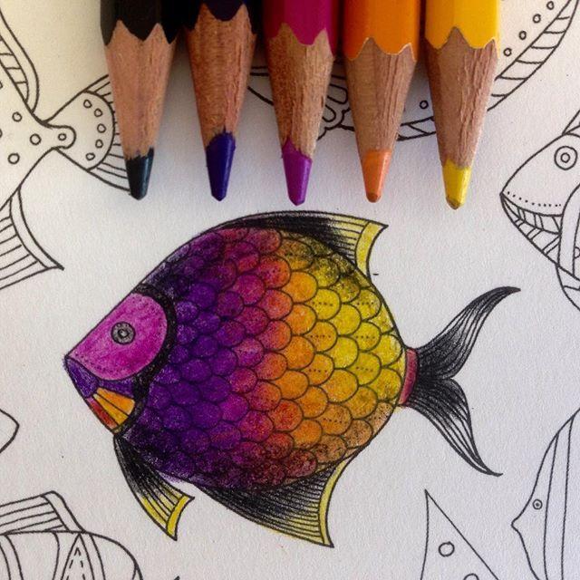 Instagram media ginapafiadache - Mais um para a coleção. Cada dia mais apaixonada por esses peixinhos e pensando em colorir uma sereia inspirada na @carolpafiadache #colorindolivrostop #docepapelatelier #jardimsecretotop #forum_da_criatividade #eutesteicores #johannabasford #colorindolivrostop #colorirlivroamo #terapiadojardim #arteconceito #desenhosparacolorir @gente_carioca @editorasextante #oceanoperdidotop #artecomoterapia #jardineiras.assumidas #jardimsecretotopmg #jardimdas...