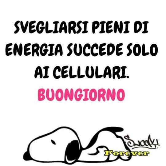 Buongiorno 16532 humour good morning good night e for Vignette buongiorno divertenti