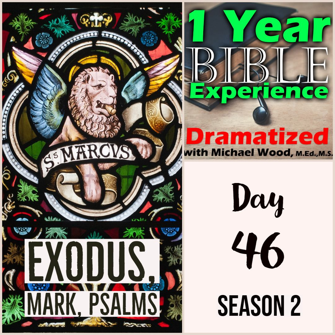 1 Year Bible Experience in 2019 | ALPHA-Writing | Audio