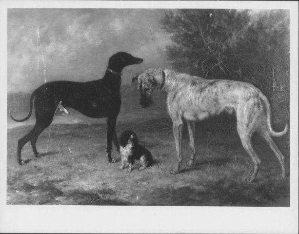 Risultati immagini per George Morley dash