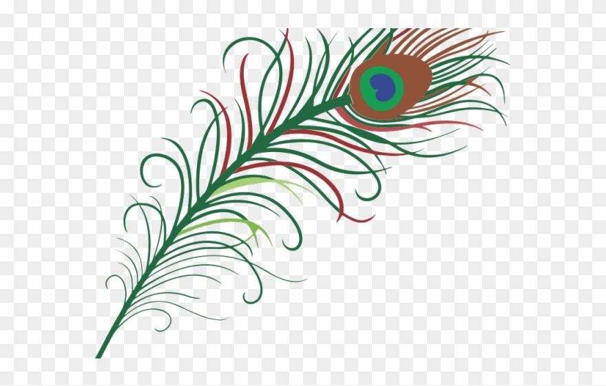 Download Hd Simple Clipart Peacock Peacock Feather Clipart Png Transparent Png And Use The Free Clipart For Your Creat Clip Art Peacock Feather Free Clip Art