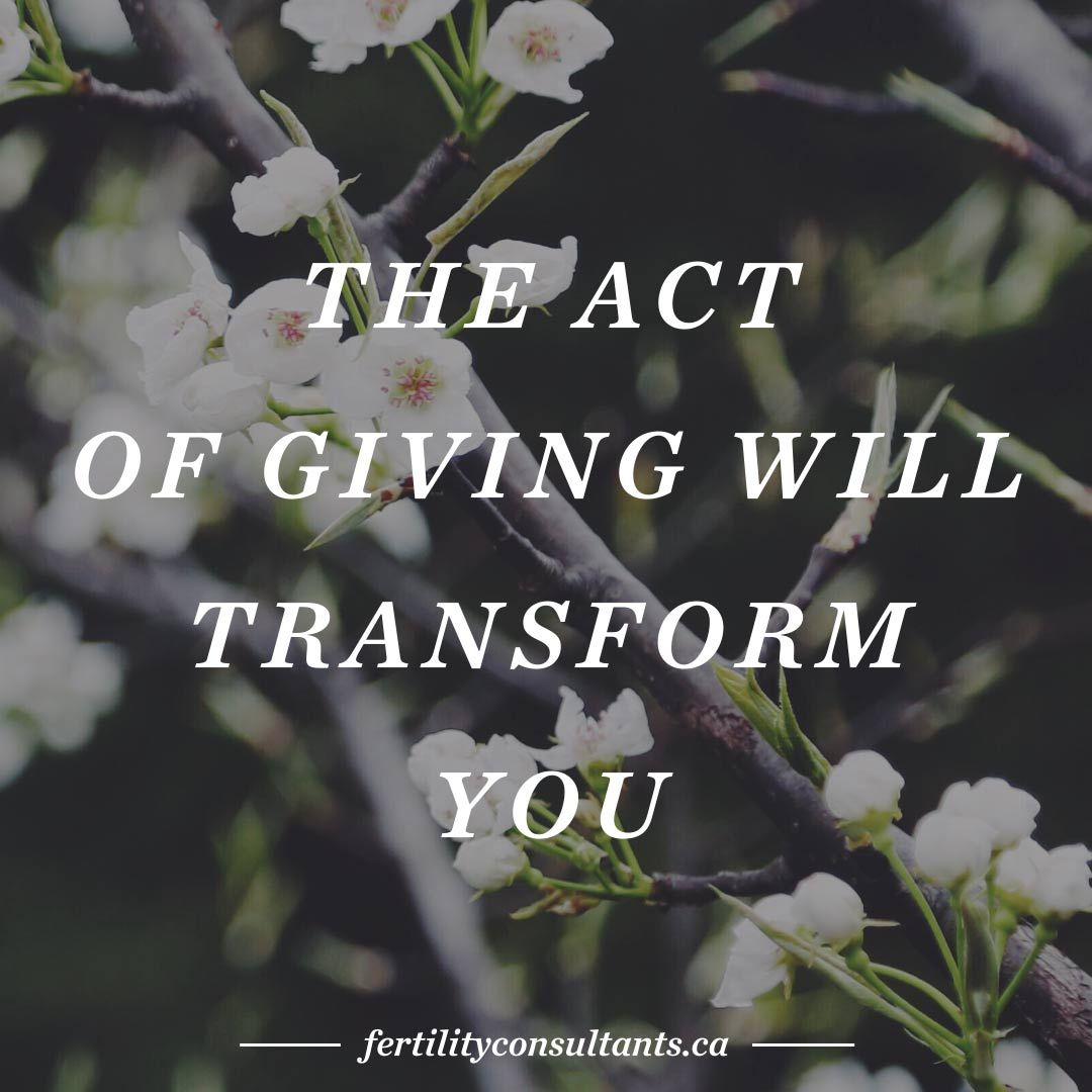 The act of giving will transform you surrogacy surrogacy in canada the act of giving will transform you surrogacy surrogacy in canada surrogate solutioingenieria Images