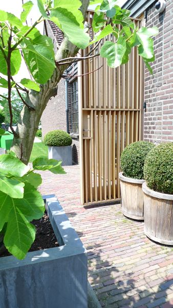 wooden shutters used as door