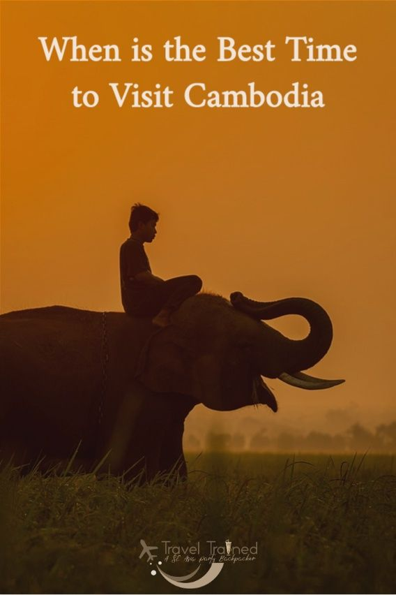 If you're looking to plan a holiday in Cambodia, you probably know what to expect – the typical tropical climate, dictated by humidity, rains and heat. You won't be wrong, either.But there's a little bit more you need to know if you want to schedule a trip to Cambodia to make it ideal to your preferences. #cambodia #southeastasia #weather #phnompenh #siemreap