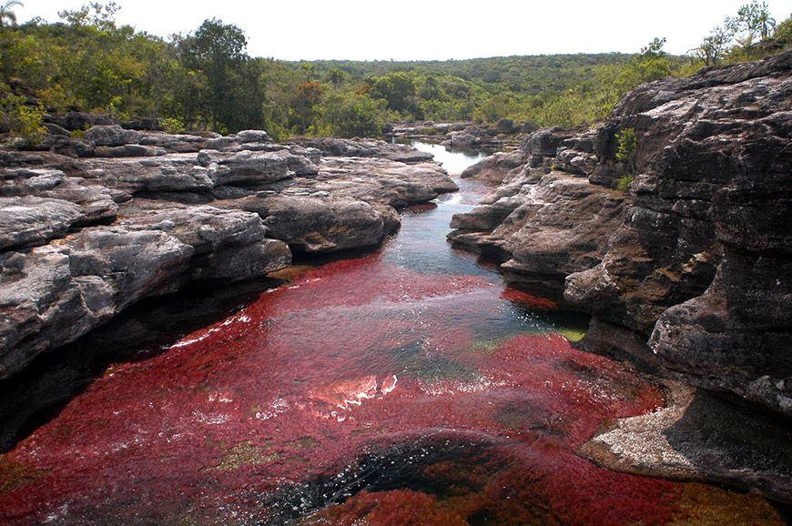 O rio que muda de cor naturalmente
