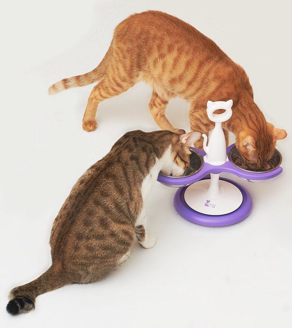 AntProof Feeder AntProof feeder in 2020 Cat