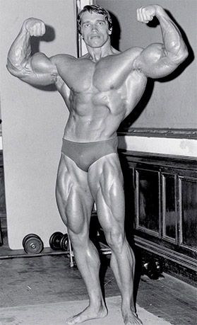 Arnold schwarzeneggers blueprint to cut vision bodybuilder bodybuilding arnold schwarzeneggers blueprint to cut vision malvernweather Gallery