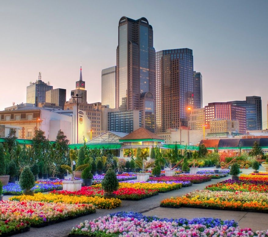 Dallas, Texas - Been there once, but I'd love to go back.