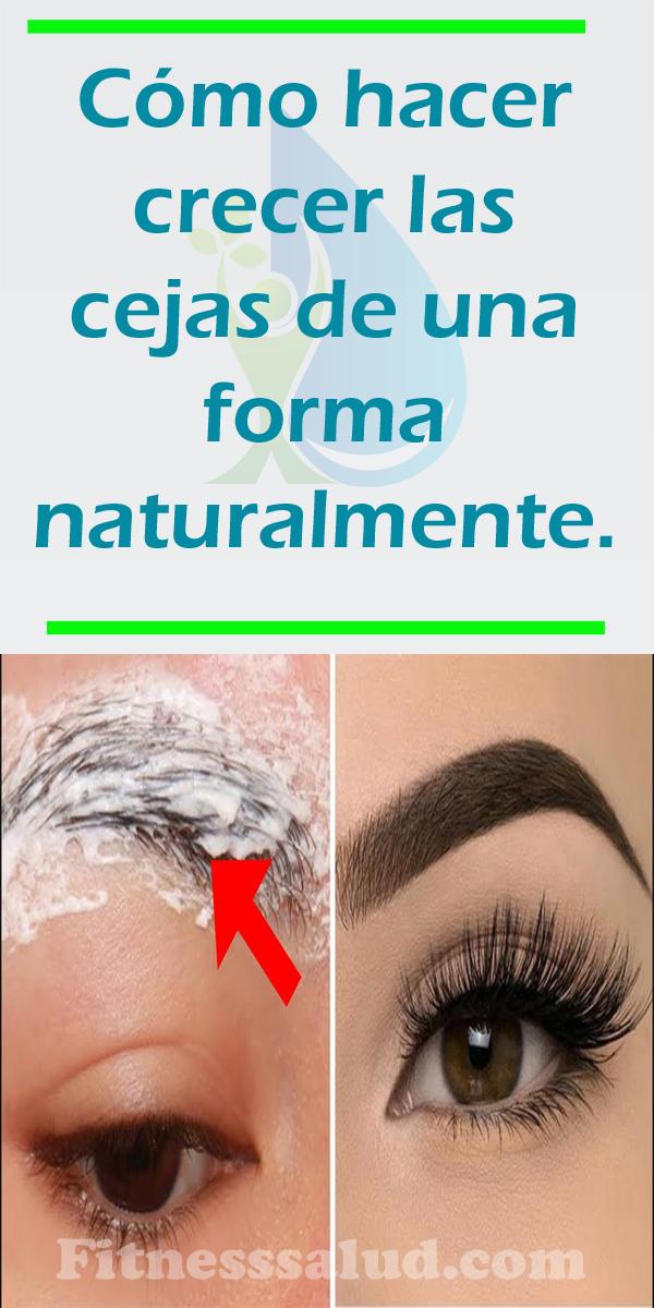 Cómo Hacer Crecer Las Cejas De Una Forma Naturalmente En 2020 Hacer Crecer Las Cejas Crecer Cejas Cómo Maquillar Las Cejas