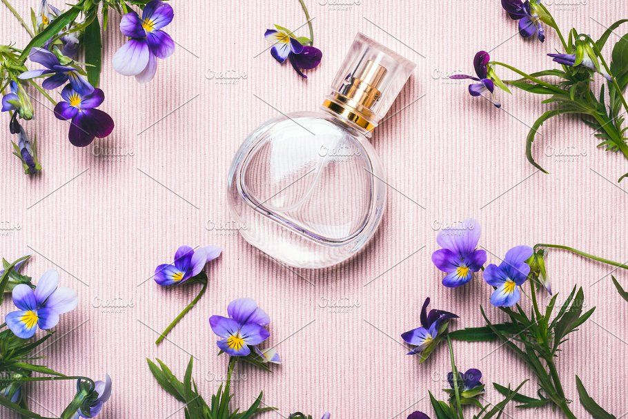 ᐈ Цветы картинки фиалки фон, фотографии цветы фиалки | скачать на ... | 607x910