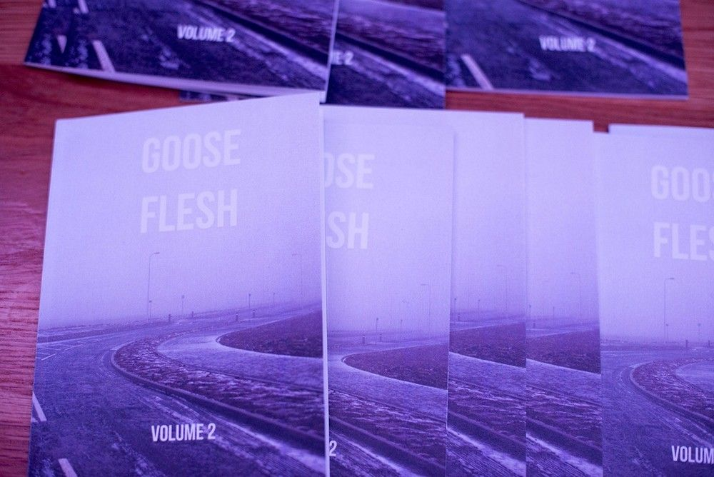 Goose Flesh, the Glasgow zine that focuses on Scottish photography is part of our top ten zines. More images here: http://www.dazeddigital.com/artsandculture/article/19713/1/ten-zines-to-look-out-for-this-month