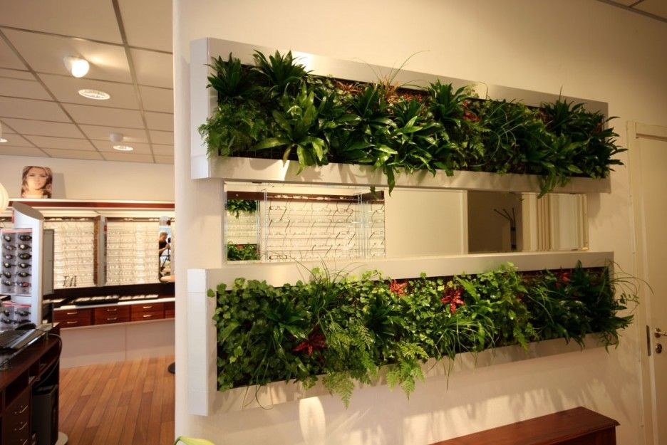 Exciting Half Wall Room Divider Design With Beautiful Green Indoor