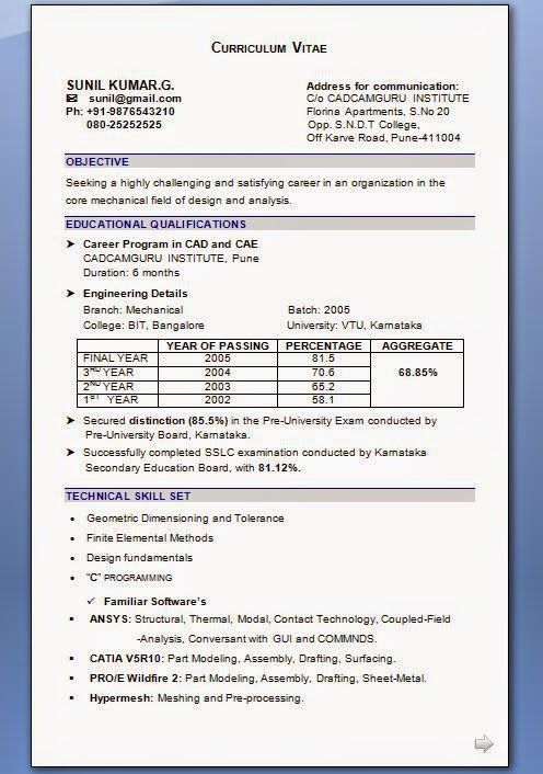 free download curriculum vitae template Sample Template Example