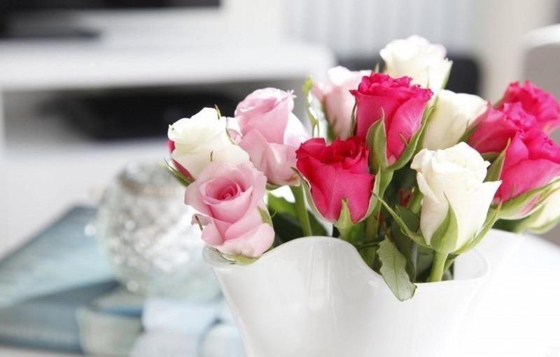 Foto Bunga Tercantik Dunia 5 Bunga Tercantik Di Dunia Outerbloom Florist Bunga Tercantik Di Dunia Mawar Merah Most Beautiful Flowers Beautiful Flowers Rose