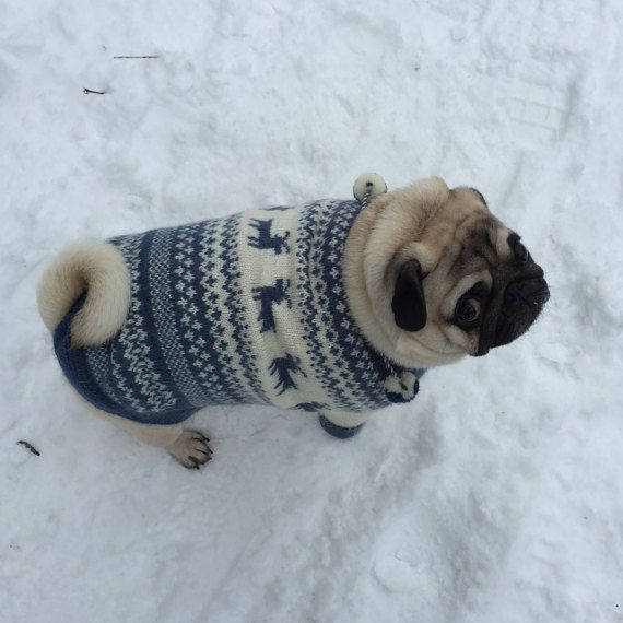 Dog Sweater Knit Dog Sweater Sweater For Pug By Kristinashashop