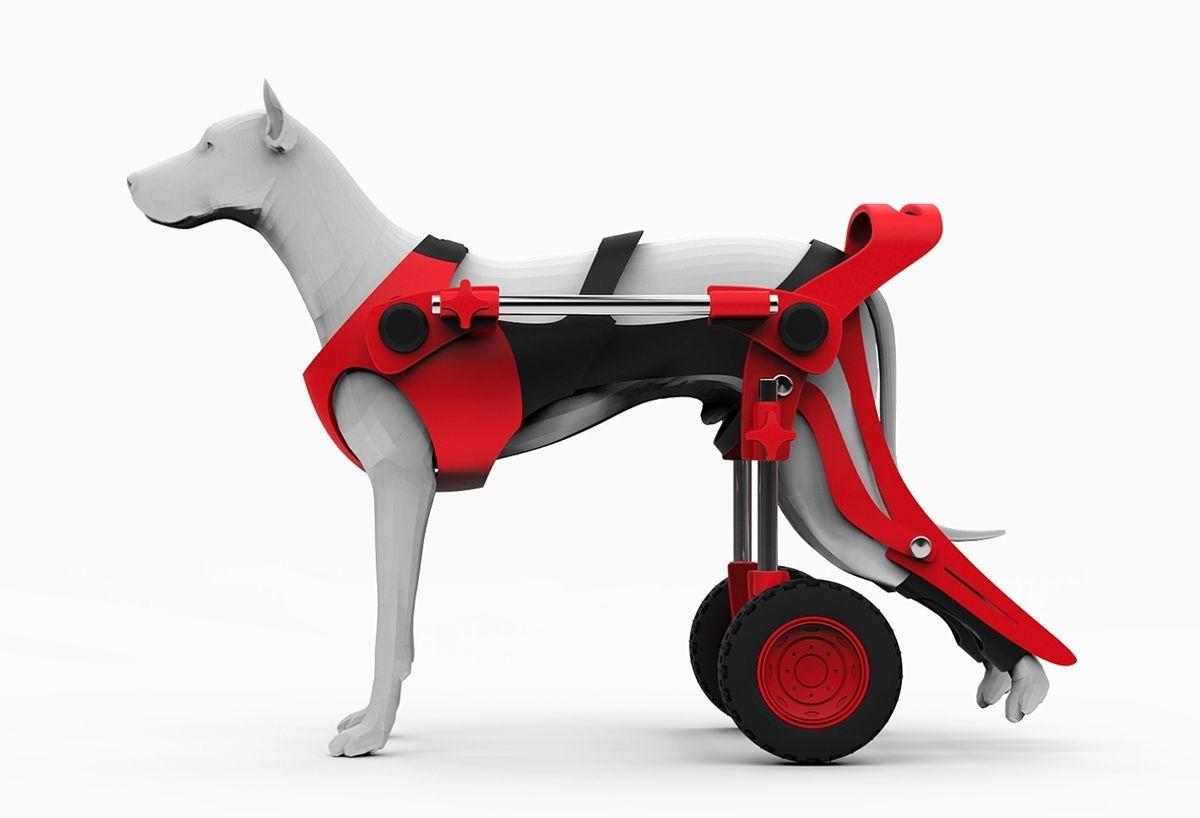 Dog wheelchair dogramp dog wheelchair diy dog