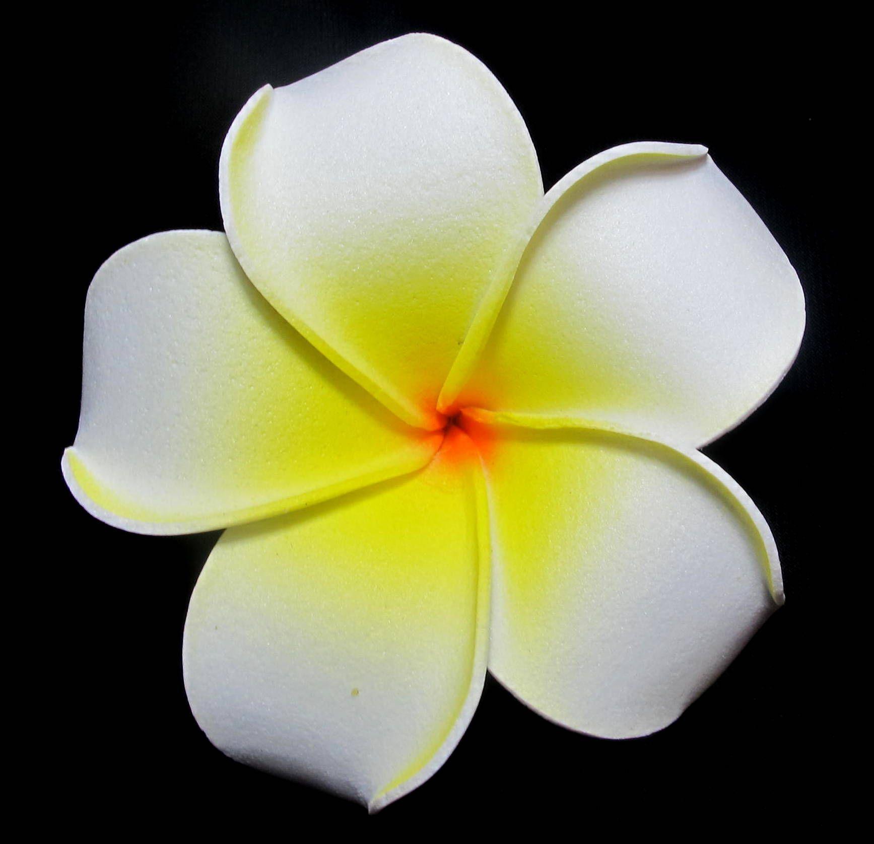 White Foam Plumeria Flower Hair Clip Wedding Jewelry Pinterest