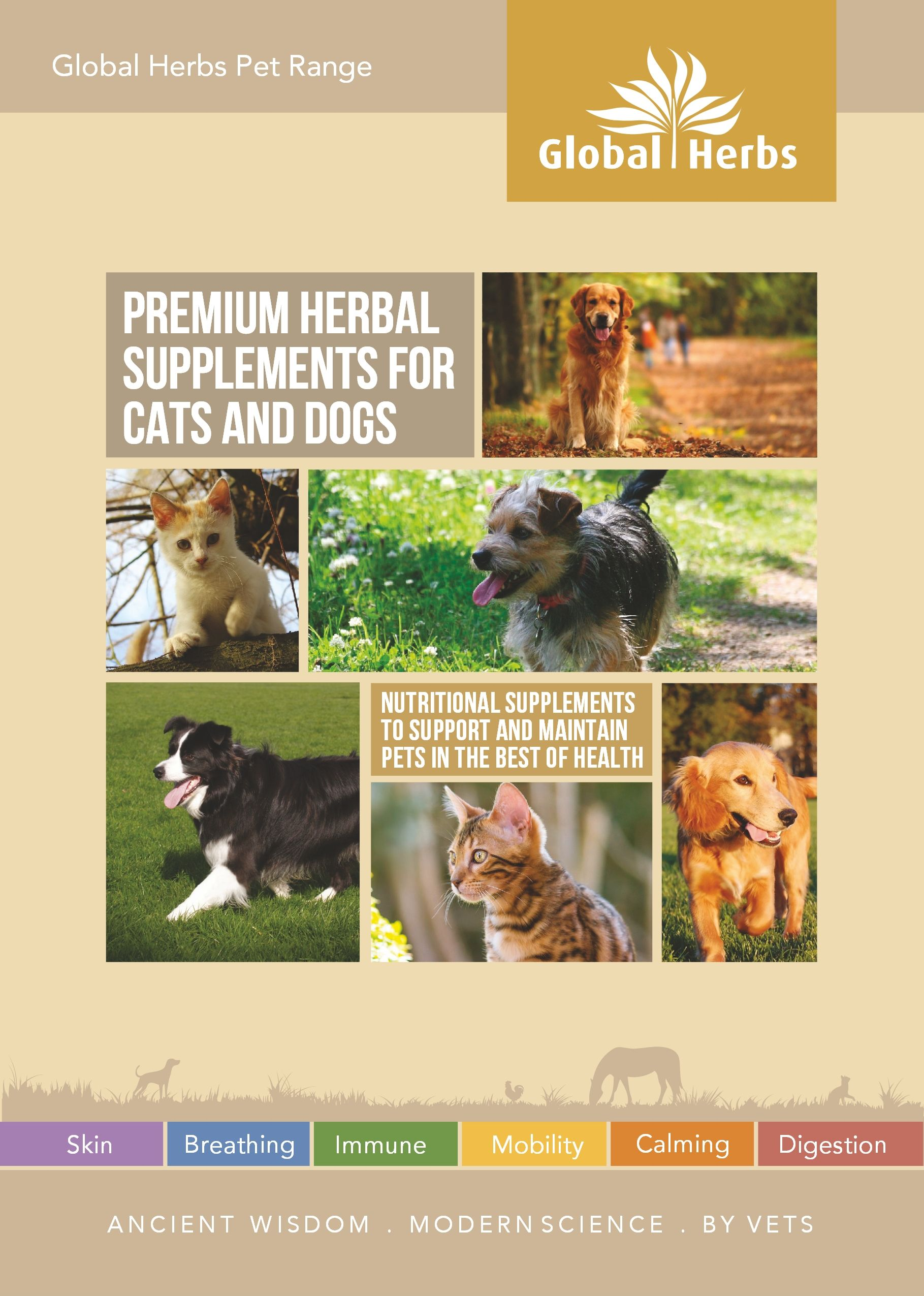 Our Brand New Pet Brochure Has Been Published O Ancient