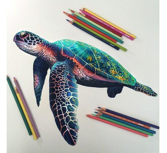 ポップリアル色鉛筆のみを使って描かれるハイパーリアリズムアートが