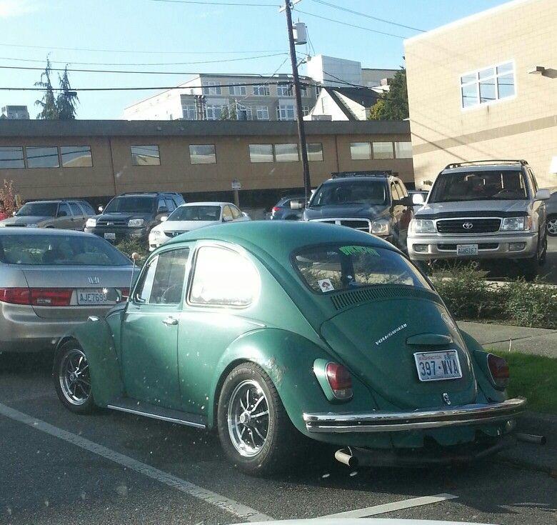 Cali bug