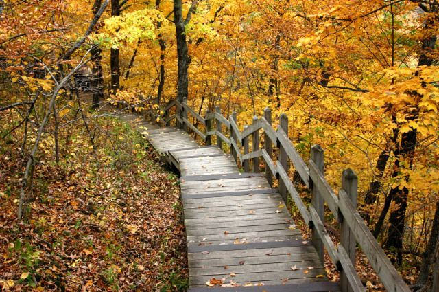 7. Pikes Peak State Park: Pikes Peak, located in McGregor, is hands-down one of the most beautiful places in Iowa. On it's trails, hikers can look out over the valley from high bluffs, and enjoy some of the most beautiful scenery in the state.