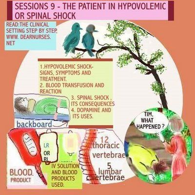 in physiology and medicine, hypovolemia (also hypovolaemia) is a, Skeleton