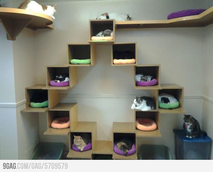 cat houses pinterest katzen katzenm bel und ikea. Black Bedroom Furniture Sets. Home Design Ideas