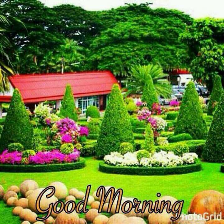 Pin By Narendra Pal Singh On Good Morning Tropical Garden