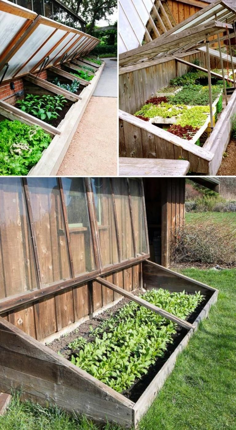 Amazing Ideas for Fall Winter Gardening Cold frame
