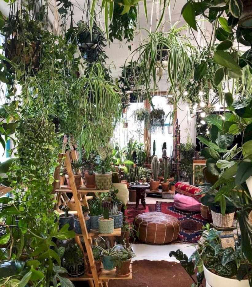 48 Lovely Indoor Jungle Decor Ideas