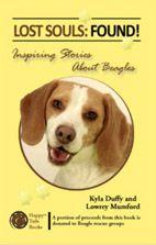 Beagle Rescue Houston Beagle Rescue Beagle Lost Soul