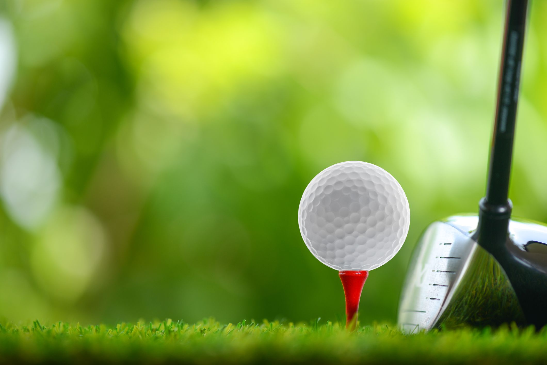 Best Drivers for Beginners Golf, Play golf, Live long