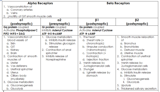Adrenergic Receptors Chart Google Search