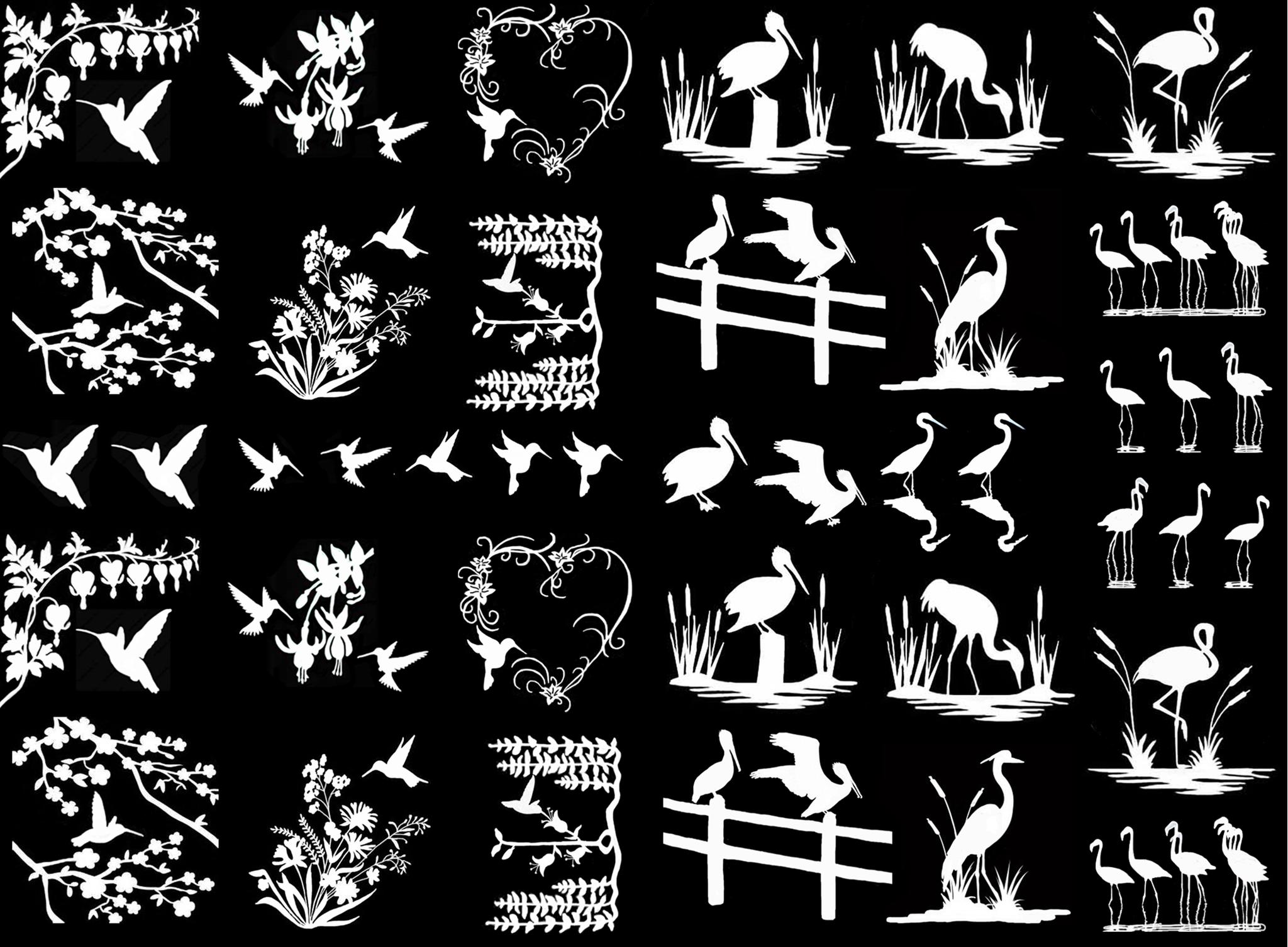 "Birds of a Feather 1/4"" to 1-1/4"" - Black 14CC311 * White 14CC400"