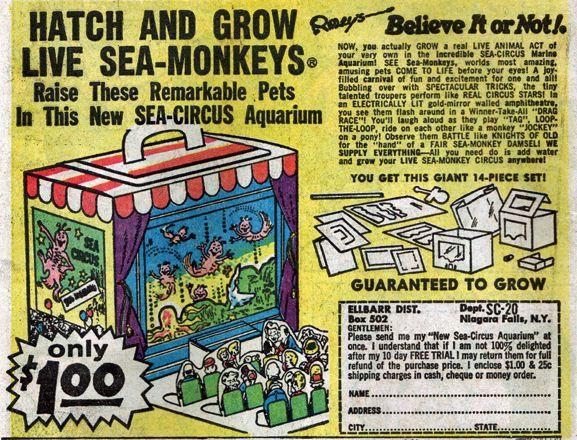 Sea Monkeys Sea Monkeys Old Comic Books Book Advertising