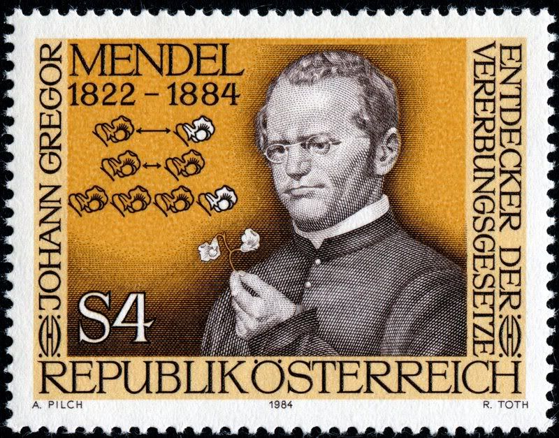 a biography of gregor mandel the founder of the modern science of genetics Gregor mendel, a 19th century augustinian monk, is called the father of modern  genetics he used a monastery garden for crossing pea plant varieties having.